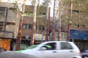 მოხატული ხეები თეირანის ერთ-ერთ ქუჩაზე